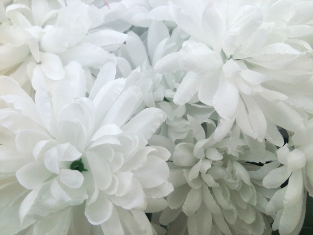葬儀における花とは?供花や花輪の送り方やマナーを解説!